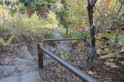 Giant Steps Trails at East Rock Park