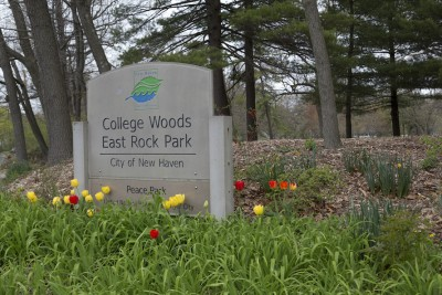Spring in East Rock Park, near Corsair, apartments in New Haven
