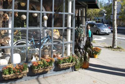 Fleur de Lys, a florist shop in near Corsair, also sells plants for your New Haven apartment. Corsair is home to new luxury apartments in New Haven.